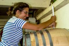 Visite Découverte de vignoble en Côtes du Rhône