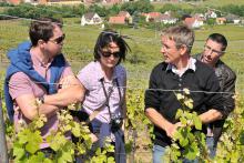 visite chez un vigneron initiation