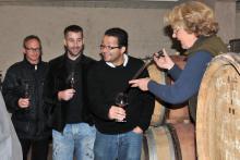 Visite découverte de vignoble en bourgogne