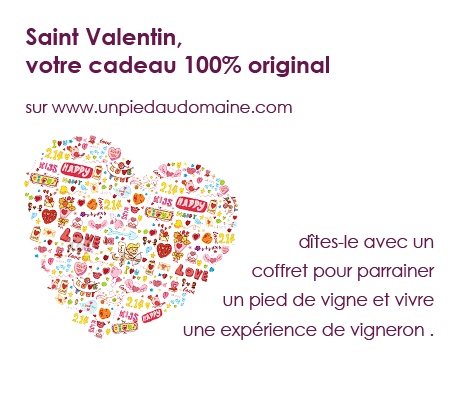 cadeau original saint valentin amateur vin pied de vigne. Black Bedroom Furniture Sets. Home Design Ideas
